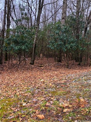 Lot 11 Connestee Trail #11, Brevard, NC 28712 (#3477081) :: Exit Mountain Realty