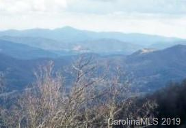 Lot 2 Sigogglin Trail, Waynesville, NC 28785 (#3477821) :: Homes Charlotte