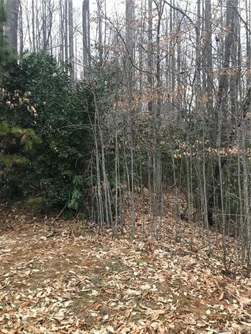 172 N Ridgeview Hill Drive #52, Hendersonville, NC 28792 (#3477899) :: Puffer Properties