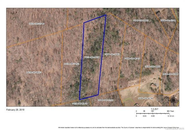 TBD Sitton Road, Webster, NC 28788 (#3478402) :: MartinGroup Properties
