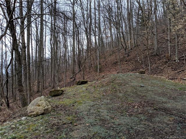 2.29 Acres on Lynn Cove Road #5, Asheville, NC 28804 (#3478712) :: Keller Williams Professionals