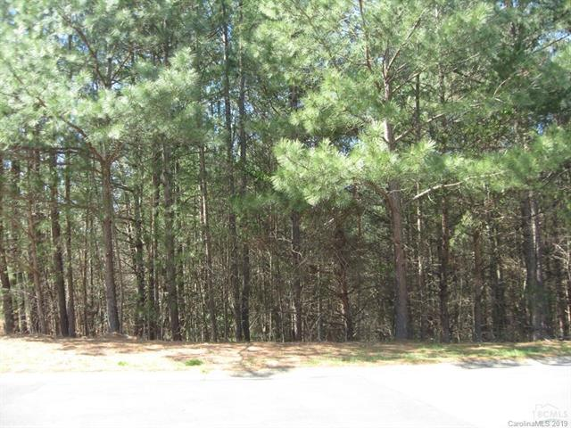 1628 Southpointe Drive, Morganton, NC 28655 (#3478876) :: LePage Johnson Realty Group, LLC