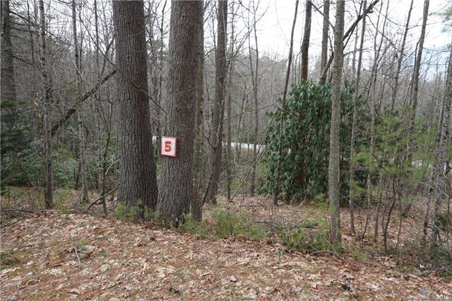 105 Drake Mountain Lane #5, Hendersonville, NC 28739 (#3479199) :: LePage Johnson Realty Group, LLC