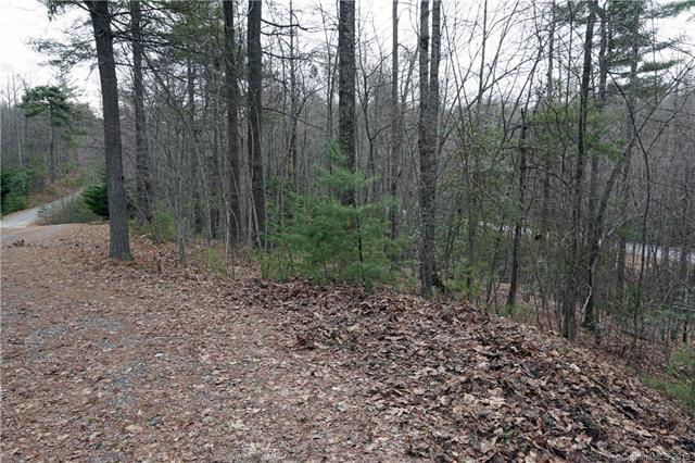 143 Drake Mountain Lane #6, Hendersonville, NC 28739 (#3479329) :: LePage Johnson Realty Group, LLC