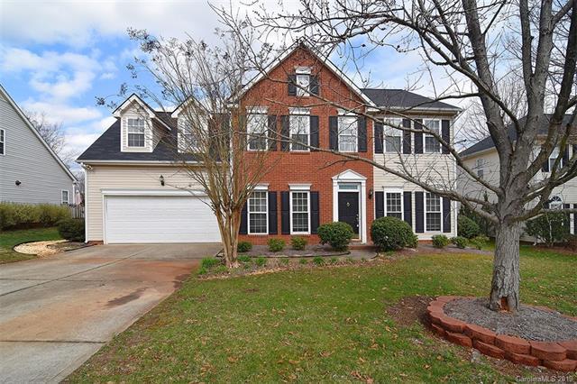 17237 Baldwin Hall Drive, Charlotte, NC 28277 (#3480487) :: Washburn Real Estate