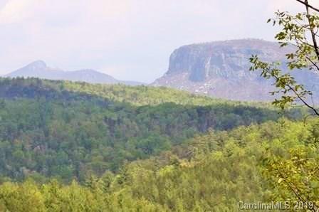 8671 Ridgeline Road #24, Nebo, NC 28761 (#3480742) :: Exit Mountain Realty