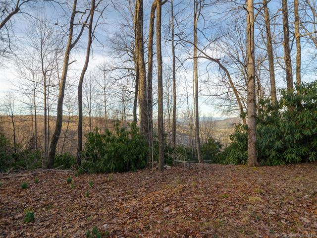 L5R S B Ridge Top Road, Pisgah Forest, NC 28768 (#3481024) :: LePage Johnson Realty Group, LLC