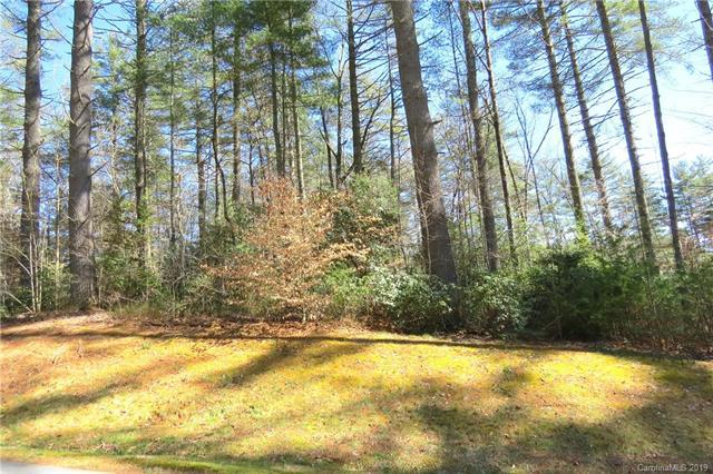 L2 Mountain Brook Trail #2, Brevard, NC 28712 (#3481227) :: Exit Realty Vistas