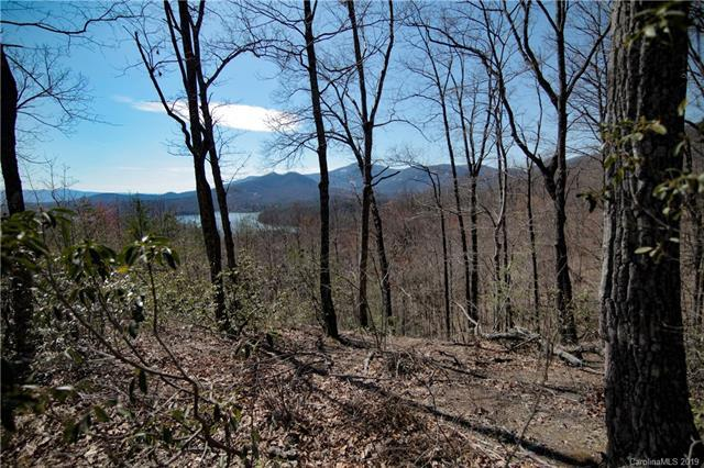 0 Hawks Nest Trail #20, Lake Lure, NC 28746 (#3481355) :: Stephen Cooley Real Estate Group