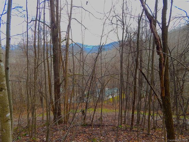 Lot 505 Kitty Lane, Waynesville, NC 28785 (#3481357) :: Team Honeycutt