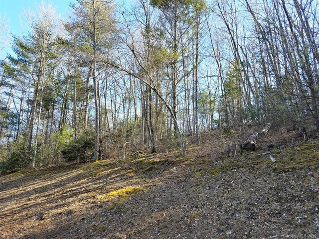 Lot 26 Clearwater Lane #26, Burnsville, NC 28714 (#3481876) :: Carlyle Properties