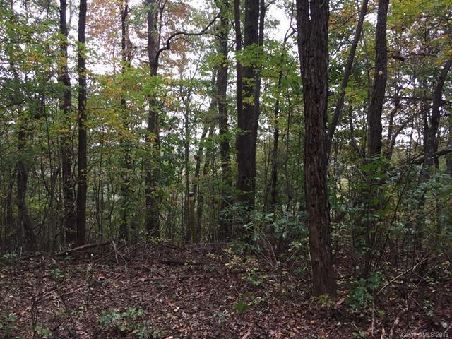 138 W Chestnut Ridges Road, Hendersonville, NC 28739 (#3481902) :: Caulder Realty and Land Co.