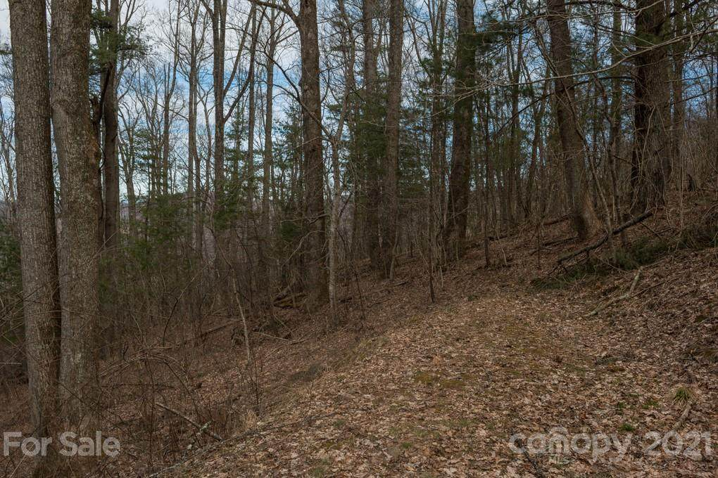 15 Mt Meadows Boulevard #30, Asheville, NC 28804 (#3481957) :: Miller Realty Group