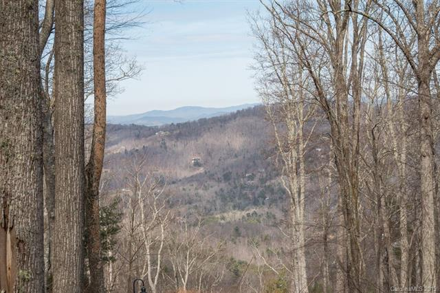 38 Mt Meadows Boulevard #33, Asheville, NC 28804 (#3481961) :: Miller Realty Group