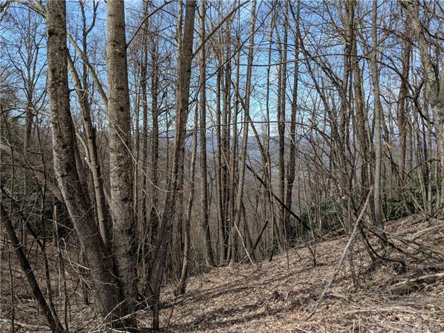 998 Wolf Pen Road #998, Old Fort, NC 28762 (#3482791) :: Cloninger Properties
