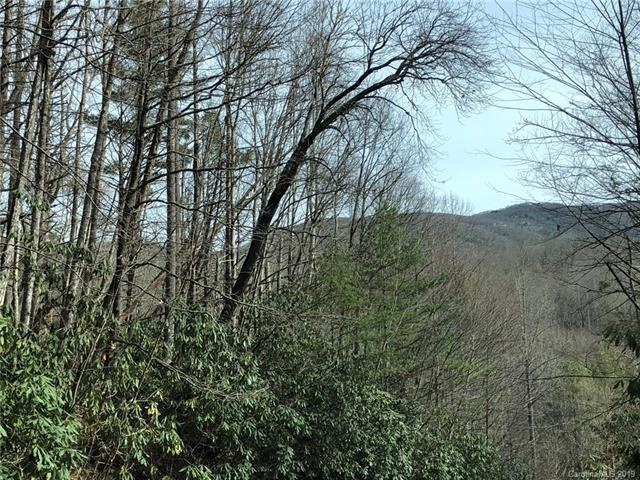 TBD Holly Road #11, Sapphire, NC 28774 (#3483324) :: The Ramsey Group