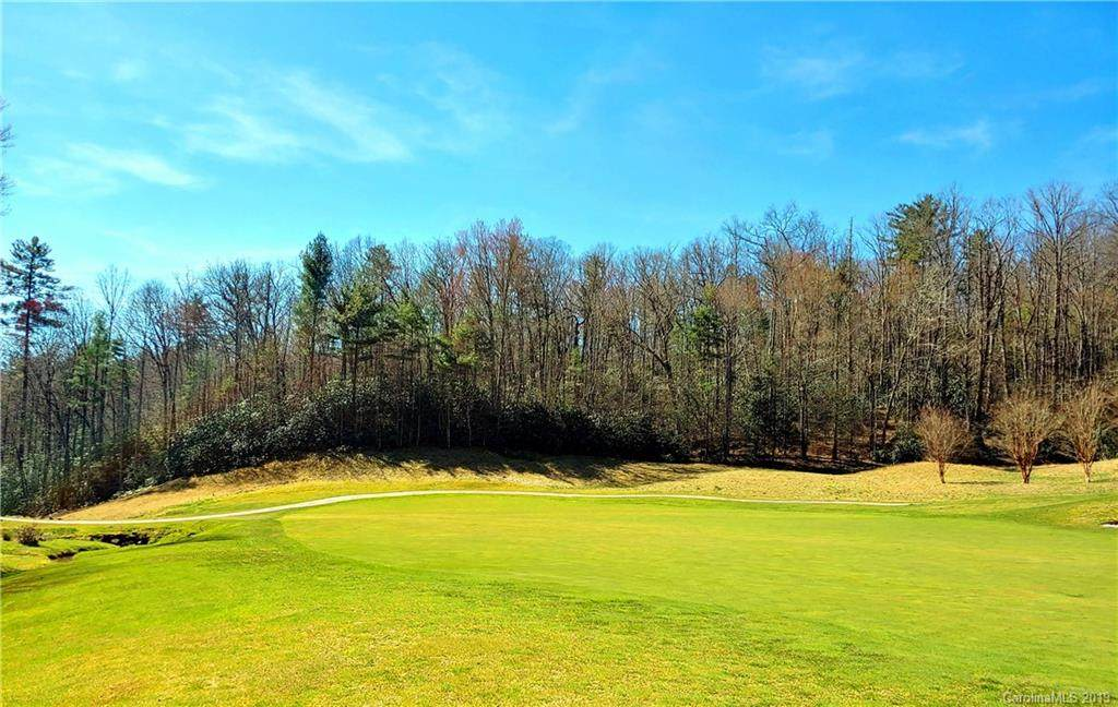 0 Chestnut Trace - Photo 1