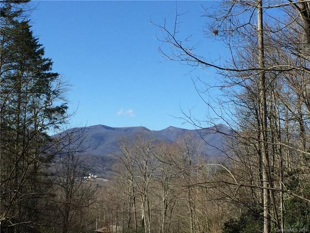 201 Settings Boulevard #244, Black Mountain, NC 28711 (#3483643) :: Keller Williams South Park
