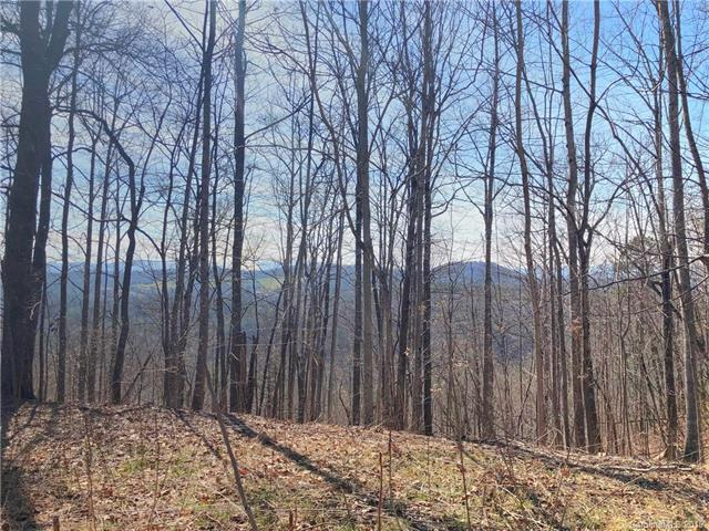 467 Overlook Park Drive #77, Hendersonville, NC 28792 (#3483658) :: Robert Greene Real Estate, Inc.