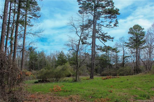 000 Henry Thompson Road, Tryon, NC 28782 (MLS #3483828) :: RE/MAX Journey
