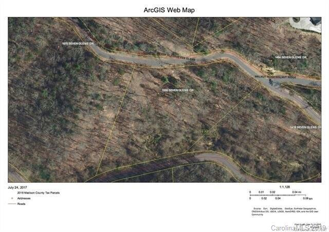 1559 Seven Glens Drive, Weaverville, NC 28787 (#3484145) :: Puffer Properties
