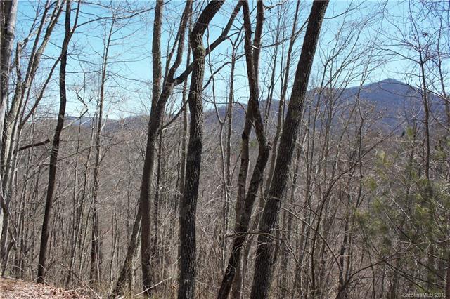 44 Parbuckle Way #44, Sylva, NC 28779 (#3484388) :: LePage Johnson Realty Group, LLC