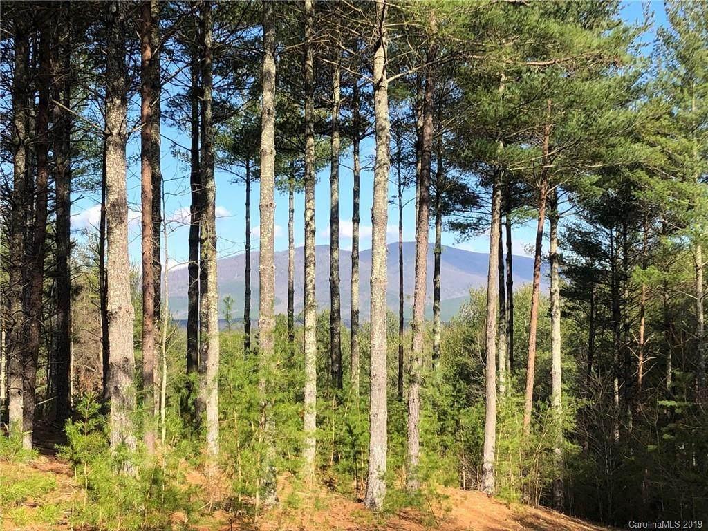 101 Hunt Camp Drive #59, Nebo, NC 28761 (#3484398) :: LePage Johnson Realty Group, LLC