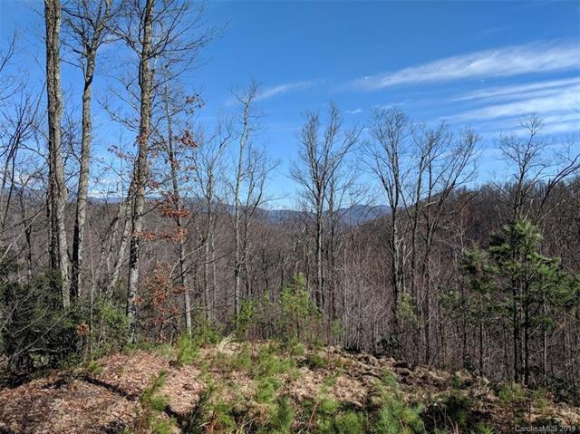 Lot CC-11  169 Verbena Lane Cc-11, Black Mountain, NC 28711 (#3484574) :: Puffer Properties