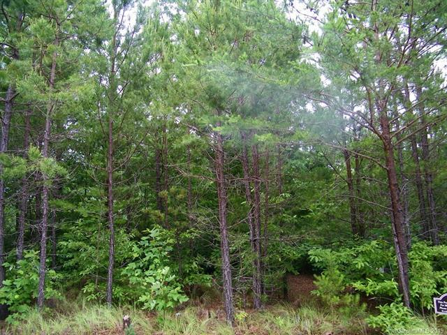 LOT 22 Highland Heights Drive, Lake Lure, NC 28746 (#3484687) :: Stephen Cooley Real Estate Group