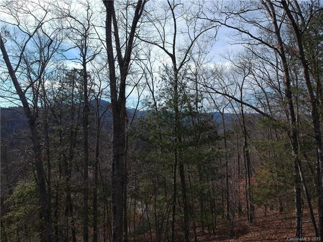 1948 French Broad Parkway #20, Marshall, NC 28753 (#3484779) :: LePage Johnson Realty Group, LLC