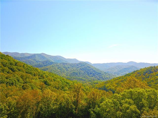 99999 Hawks Pointe Lane, Weaverville, NC 28787 (#3484913) :: Exit Mountain Realty