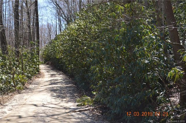 000 Fair Hollow Lane, Hendersonville, NC 28792 (#3485063) :: The Premier Team at RE/MAX Executive Realty
