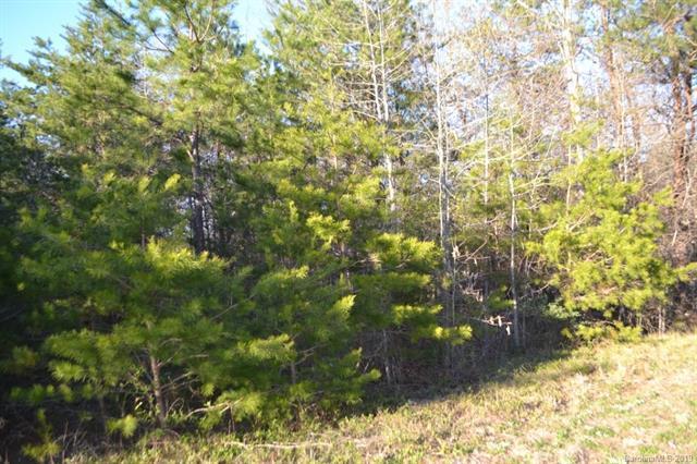 0 Us 74 Bypass Highway, Ellenboro, NC 28043 (#3485217) :: Robert Greene Real Estate, Inc.