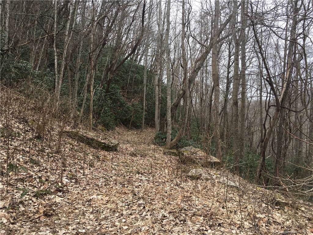 Lot 96 Whispering Woods Path - Photo 1