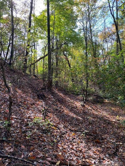 Lot 49 Boulder Run, Lake Lure, NC 28746 (#3485888) :: Carlyle Properties