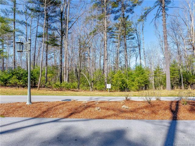 6 Stansbury Drive #529, Asheville, NC 28803 (#3485897) :: Puffer Properties