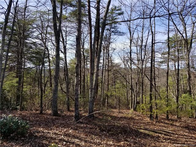 8714 Lisa Trail #30, Connelly Springs, NC 28612 (#3486184) :: Cloninger Properties