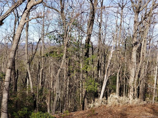 6226 Tommys Trail #51, Connelly Springs, NC 28612 (#3486216) :: LePage Johnson Realty Group, LLC
