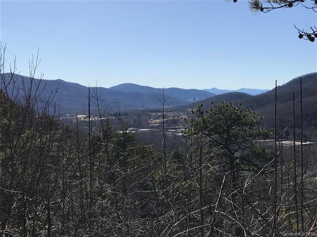 000 Seldom Home Drive, Black Mountain, NC 28711 (#3486396) :: Puffer Properties
