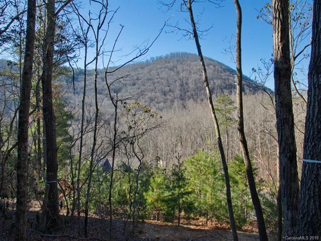 10 Piney Trace Loop #140, Fairview, NC 28730 (#3486416) :: MECA Realty, LLC