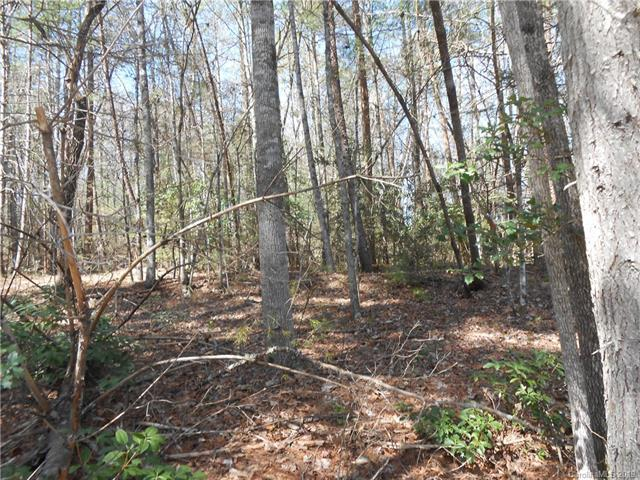 V/L James View Road #3, Marion, NC 28752 (#3486537) :: Puffer Properties