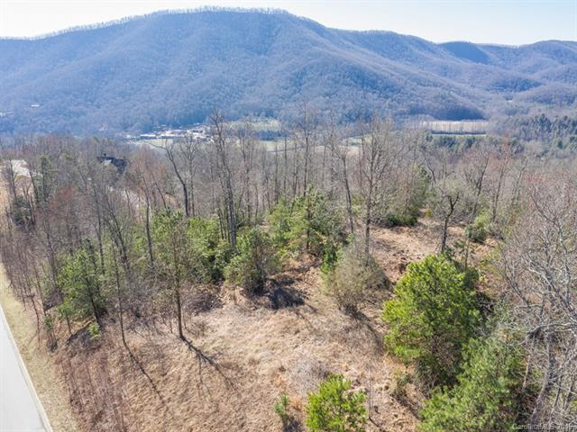 99999 Stonefly Drive #96, Horse Shoe, NC 28742 (#3486641) :: Miller Realty Group