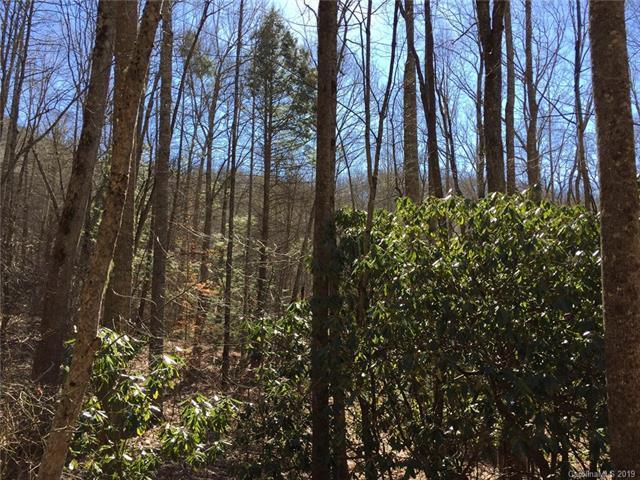 2835 Preserve Road #104, Sylva, NC 28779 (#3487108) :: LePage Johnson Realty Group, LLC