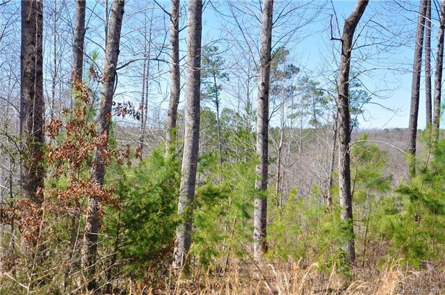 0 Countrywood Drive #52, Forest City, NC 28139 (#3487244) :: Puffer Properties