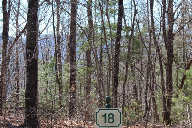 100 Brown Bear Ridge Trail #18, Zirconia, NC 28790 (#3487362) :: Team Honeycutt