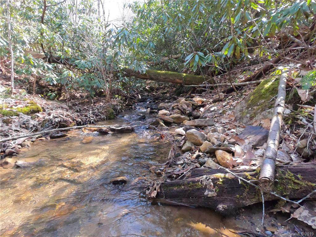 19 +/- Acres Homers Lane, Hendersonville, NC 28792 (#3487585) :: Caulder Realty and Land Co.