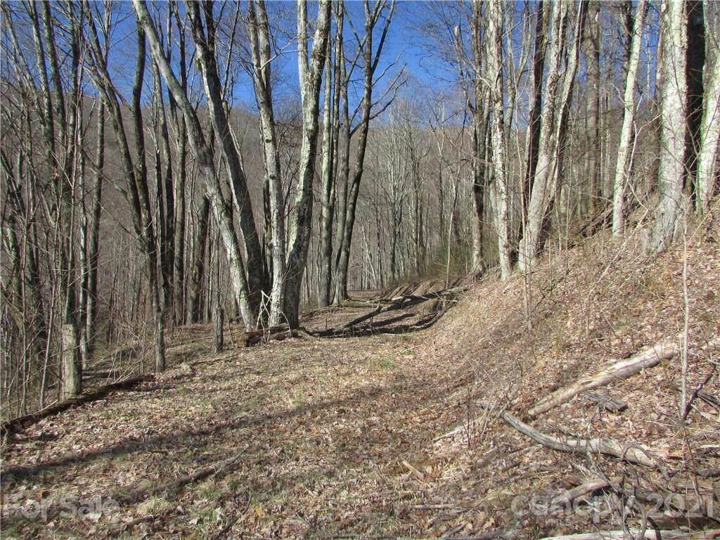 0 Running Bear Road, Hot Springs, NC 28743 (#3487720) :: Keller Williams Professionals