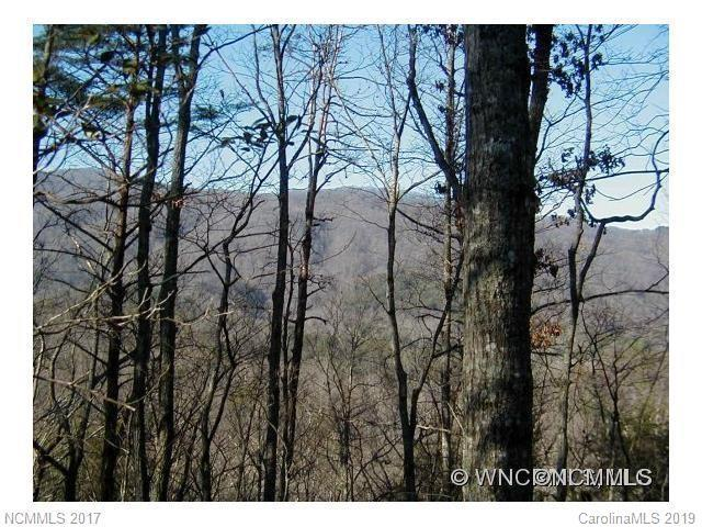 Lot 67 Treetops Lane #67, Lake Lure, NC 28746 (#3487796) :: Robert Greene Real Estate, Inc.