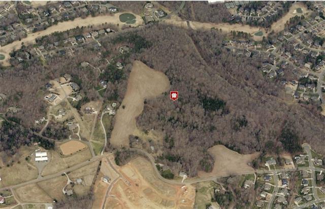 15425 June Washam Road, Davidson, NC 28036 (#3487822) :: LePage Johnson Realty Group, LLC