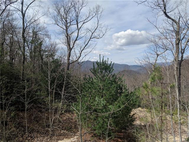 16 Mount Amy Road #16, Black Mountain, NC 28711 (#3487877) :: Cloninger Properties
